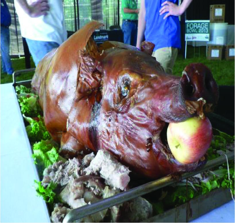 Pig Roasts & Rentals